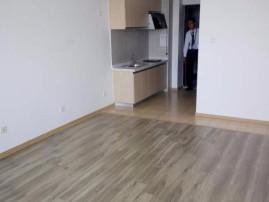 奥体中工业北 精装现房公寓 民水民电 网签后三个月下证 价格合适