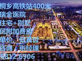 嘉兴桐乡高铁站400米+上海瑞金医院+800亩健康生态园+配套成熟